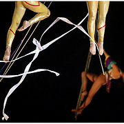 Performers with the Cole Brothers Circus dance suspended from wires Sunday at the Pitt County Fairgrounds. (Jason A. Frizzelle) This collection of images represents more than a decade of work at newspapers and wire services throughout North Carolina. I now practice my style of story-telling photography for weddings community events as well as portrait sessions ranging from brides to local authors. After graduating from Randolph Community College I spent more than a decade documenting communities throughout Eastern North Carolina with a camera. My passion for capturing story-telling images has allowed me to witness everything from High School Football to Hurricanes and even Presidential visits.<br />