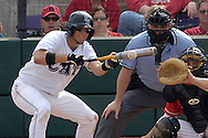 Kansas State's Nate Tenbrink (L) lays down a sacrifice bunt in the bottom of the fifth inning against the Huskers.  Nebraska held on to beat Kansas State 5-4 at Tointon Stadium in Manhattan, Kansas, April 1, 2006.
