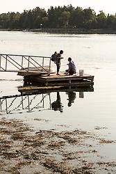 David Brenneman and Lauren Leclerc water sampling in Casco Bay as volunteers for Friend of Casco Bay