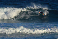 Surfer on a wave in the sea, Maui, Hawaii.