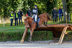 Eriksen Camilla, DEN, Union Jack Z<br /> Mondial du Lion - Le Lion d'Angers 2019<br /> © Hippo Foto - Stefan Lafrentz