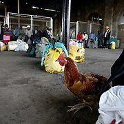 Luggage and a chicken wait to be boarded onto a train at the Nairobi railway station.