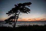 Kvällning vid Tofta på Gotland