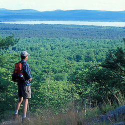 Freedom, NH.A hiker looks out towards Ossippee Lake from Mary's Mountain in Freedom, New Hampshire.  Part of future town forest near Trout Pond.
