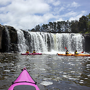 Tourists Kayaking at Haruru Falls with Coastal Kayakers, Waitangi Beach, Paihia, Bay of Islands, New Zealand, The day's paddle includes sheltered waters of the Waitangi Estuary with time exploring the Mangrove forests and Haruru falls. Bay of Islands, North Island, New Zealand,, 17th November 2010 Photo Tim Clayton.