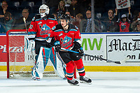 KELOWNA, BC - OCTOBER 2:  Roman Basran #30 stands in net as Elias Carmichael #14 of the Kelowna Rockets skates against the Tri-City Americans at Prospera Place on October 2, 2019 in Kelowna, Canada. (Photo by Marissa Baecker/Shoot the Breeze)