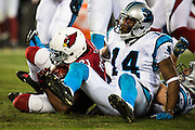 January 24, 2016: Carolina Panthers vs Arizona Cardinals. Joe Webb