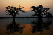 CUYABENO, ECUADOR: August 11, 2005 -- AMAZON DAY 4 -- Cuyabeno Day 4...Steve McKinley Photo.<br />