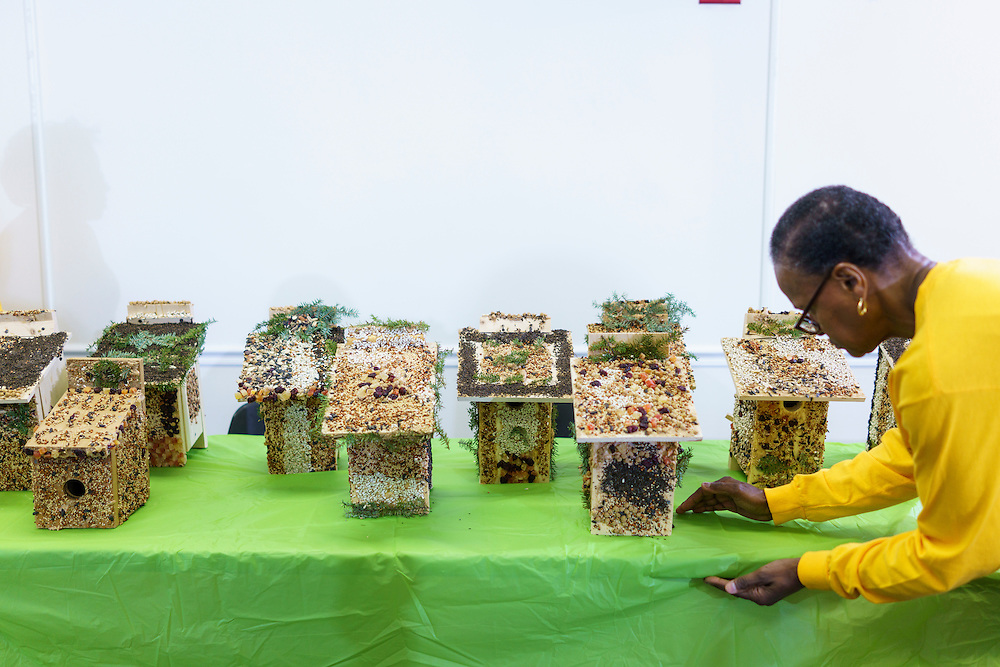 Upper Marlboro, Maryland - January 03, 2017: Judy French clears birdseed off the table holding the birdhouses made by her fellow Senior Green Team members before judges cast their ballots for top birdhouses at the Watkins Park Nature Center in Upper Marlboro, Md., Tuesday January 3, 2017. The group meets the first Tuesday morning of each month and works on nature beautification projects like trail maintenance, tree planting, clean ups, and, educational outings. <br /> <br /> CREDIT: Matt Roth