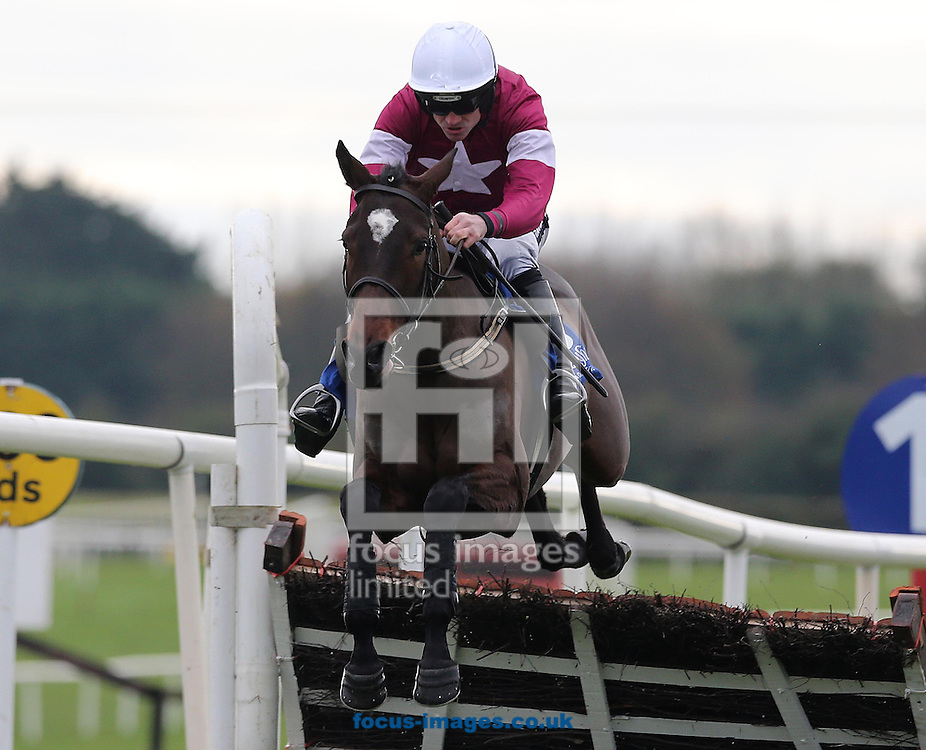 Picture by Lorraine O'Sullivan/Focus Images Ltd +353 872341234<br /> 01/12/2013<br /> Ruby Walsh wins on Analifet during the Bar One Racing Juvenile 3 Year Old Hurdle at Fairyhouse Races at Fairyhouse Racecourse, Ratoath.