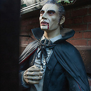 Halloween Dracula  decoration on side of brownstone in Greenwich Village, NYC.
