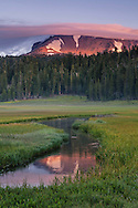 Cloud cap on Lassen Peak at sunrise reflected in Kings Creek, Upper Meadow, Lassen Volcanic National Park, California