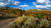 Fall colors at Goodenough Creek Campground, south of Pocatello, Idaho in Caribou Mountains