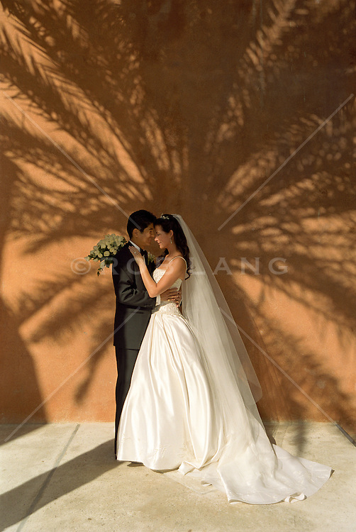 bride and groom embracing while leaning against a wall with a shadow of a palm tree