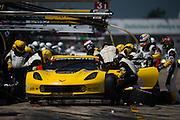 March 19-21, 2015 Sebring 12 hour 2015: Gavin/Milner/Pagenaud,USA Corvette Racing C7.R GTLM