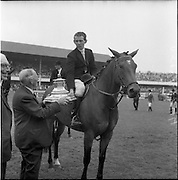06/08/1960<br /> 08/06/1960<br /> 06 August 1960<br /> R.D.S Horse Show Dublin (Saturday). &quot;Dundrum&quot;, owned by Mr James Wade, Camas, Cashel, Co. Tipperary and ridden by Mr. Thomas Wade (brother of James) won the Wylie Perpetual Challenge Trophy, the 'Civillian' Championship of the Show, at the Dublin Horse Show. Picture shows the Hon. W.E. Wylie, Q.C., the diner of the trophy, presenting the prize to Mr. Thomas Wade.