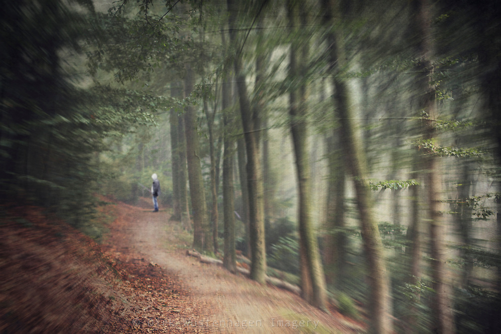 Man standing on a forest path - manipulated photo