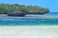 Aldabra Atoll, The Seychelles<br /> 'Champignon' rock formations and lagoon<br /> c. Ellen Rooney