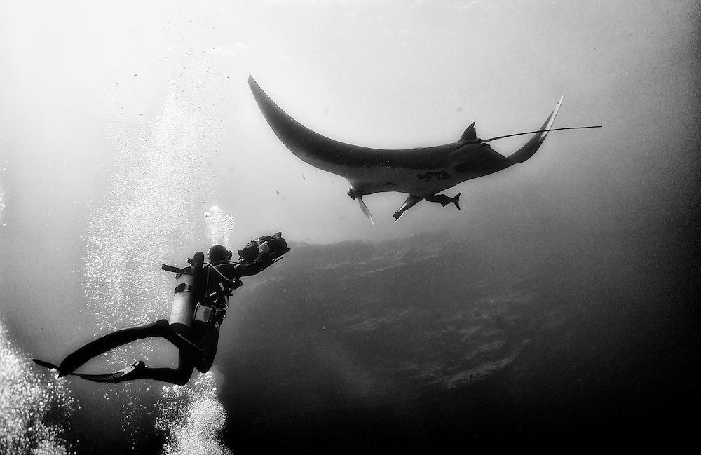 Filming mantas in El Boiler, Revillagigedo.
