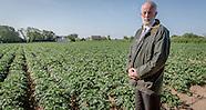 Steve Luce, potato field