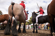 Ringreiten Walcheren - Ring Riding, Netherlands