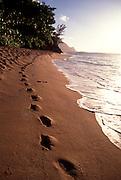 Footprints, Hanalei, Kauai, Hawaii<br />