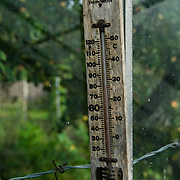 An old themometer against a dusty greenhouse window