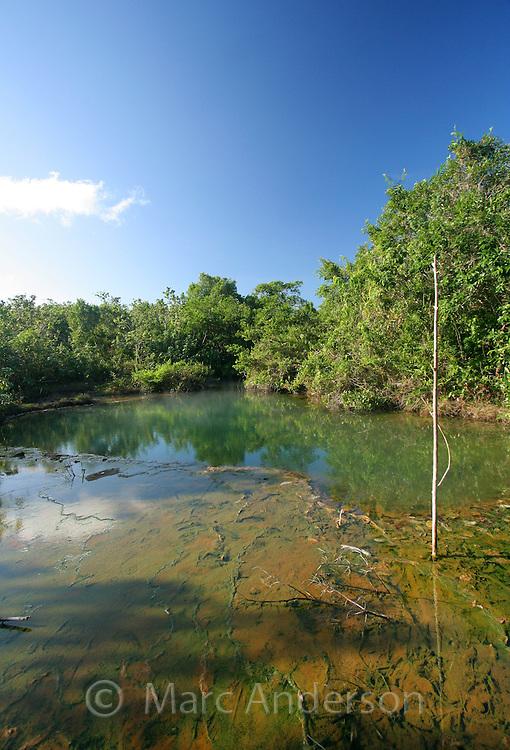 Maquinit (Makinit) Hot Springs near El Nido, Palawan, Philippines