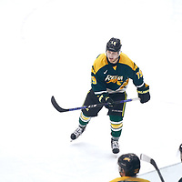 3rd year forward, Gray Marr (19) of the Regina Cougars during the Men's Hockey Home Game on Sat Jan 19 at Co-operators Center. Credit: Arthur Ward/Arthur Images