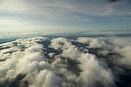 El cero Campana localizado en la provincia de Panam&aacute; cerca de 50 kil&oacute;metros (una hora en carro) al oeste de la Ciudad de Panam&aacute;. Campana es el primer Parque Nacional de Panam&aacute; y fue establecido legalmente en 1967.<br /> <br />  El parque protege 4,816 hect&aacute;reas de una gran diversidad biol&oacute;gica. Las famosas ranas &quot;doradas&quot; de Panam&aacute; se pueden encontrar aqu&iacute;. Cerro Campana favorece dos vertientes del R&iacute;o Sajalices, que fluyen hacia el Pac&iacute;fico y hacia la cuenca del r&iacute;o Chagres, que es el sistema de acopio para el Canal de Panam&aacute;. <br /> <br /> El parque protege una significativa parte del funcionamiento operativo del Canal. Seg&uacute;n cient&iacute;ficos de la Universidad de Panam&aacute; y el Instituto Smithsonian de Investigaciones Tropicales, la elevaci&oacute;n de la roca bas&aacute;ltica que forma los acantilados contribuye a la riqueza de la flora y de la fauna. <br /> <br /> Primer Parque Nacional de la Republica de Panam&aacute;, declarado en 1966, El parque cuenta con r&iacute;os, flora y fauna, visitas esc&eacute;nicas, cascadas, formaciones rocosas, paisajes, grutas o cavernas y senderos terrestres y es un &aacute;rea importante para aves. <br /> <br /> La temperatura de altura es t&iacute;picamente muy agradable. Cuenta con senderos naturales en el que se pueden observar numerosas plantas y animales. <br /> &copy;Alejandro Balaguer/Fundaci&oacute;n Albatros Media.