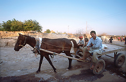 TURKEY HARRAN JUL02 - Horse-drawn carts are the predominant mode of transport in the countryside...jre/Photo by Jiri Rezac..© Jiri Rezac 2002..Contact: +44 (0) 7050 110 417.Mobile:   +44 (0) 7801 337 683.Office:    +44 (0) 20 8968 9635..Email:   jiri@jirirezac.com.Web:    www.jirirezac.com