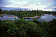 The Dairam Kabur or the Becking River at Yofofla in Papua, Indonesia. On the eastern side of the river live the Kombai and on the western side the Korowai, both of whom are so-called treehouse people who build their homes high up in the trees.