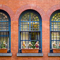 Arched windows of a New York City building with Halloween figures in the window planterrs