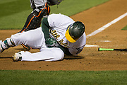 Oakland Athletics first baseman Yonder Alonso (17) goes to the ground after getting hit by a Miami Marlins pitch on the right wrist at Oakland Coliseum in Oakland, Calif., on May 23, 2017. (Stan Olszewski/Special to S.F. Examiner)