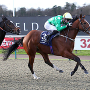 Lingfield 10th January