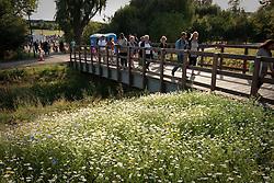 Summer fair on Lordship Recreation Ground, Tottenham, London
