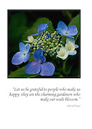 Quote Card -  5x7 Art Cards: $2.95 each; 6 Assorted: $15.95; 12 Assorted: $29.95
