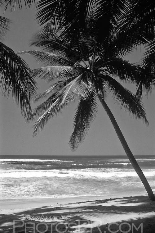 Beach at Aguadilla, Puerto Rico