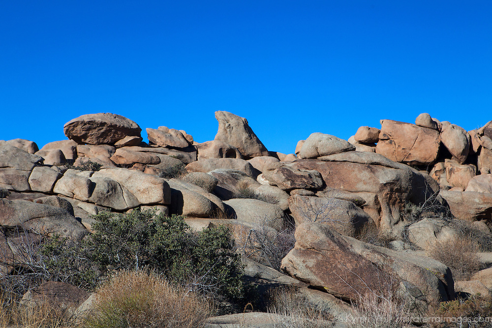 USA, California, Joshua Tree. Boulders of Joshua Tree.