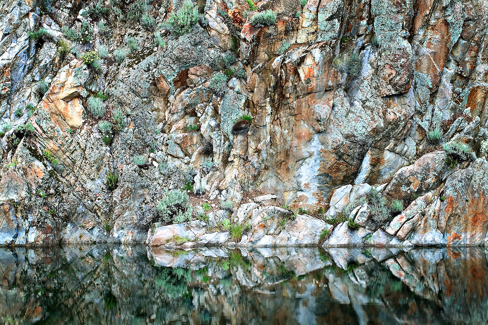Abstract Rock Wall and Flowers Reflecting in Banks Lake, Washington