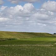 Nederland Ossenisse  gemeente Hulst  19 juni 2010 20100619       ..Serie landschappen provincie Zeeland. Zeeuws-Vlaanderen, polderlandschap landschap dijk  westerschelde.  scenery. Schapen op de dijk in de zon en op de voorgrond akkerbouw perceel.  Afwisselend wisselvallig weer.   Illustratief waterveiligheid, infrastructuur, ruimtelijkheid. , schone energie, schone lucht, schoon, schoonheid, sea level, sealevel, sheep, skies, space, sprankelend, sprankelende, stijging zeespiegel, stil, stilleven, stilte, stock, stockbeeld, streek, sunny, sustainable, terrein, typerend, typical dutch landscape, typisch hollands, typisch hollands landschap, typische, uitgestrektheid, uitzicht, uniek, unieke, veiligheid, veld, vergezicht, vergezichten, verte, vrij, vrijheid weer, water level, waterbeheer, Waterbeheerplan, waterhuishouding, waterkering, waterkeringen, Waterkeringen, waterlevel, watermanagement, waterniveau, waterpeil, waterplan, waterproblematiek, waterstaatkundige, waterstand, watersysteem, waterveiligheid, waterveiligheid en gebiedsontwikkeling, waterwerken, weersomstandigheden, wei, weide, weidegang, weiland, weiland. Landscape, wijdheid, wijds, wijdsheid, wit, witte, wolk, wolken, wolkenpartij, zeeland, zeeuws vlaanderen, zeeuws-vlaanderen, zeewering, zo vrij als een vogel, zonnig, zonnige dag, zwitserleven gevoel  ..Foto: David Rozing