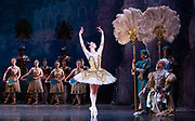 La Bayadere <br /> A ballet in three acts <br /> Choreography by Natalia Makarova <br /> After Marius Petipa <br /> The Royal Ballet <br /> At The Royal Opera House, Covent Garden, London, Great Britain <br /> General Rehearsal <br /> 30th October 2018 <br /> <br /> STRICT EMBARGO ON PICTURES UNTIL 2230HRS ON THURSDAY 1ST NOVEMBER 2018 <br /> <br /> <br /> <br /> Natalia Osipova as Gamzatti <br /> <br /> Thomas Whitehead as Rajah <br /> <br /> <br /> Photograph by Elliott Franks Royal Ballet's Live Cinema Season - La Bayadere is being screened in cinemas around the world on Tuesday 13th November 2018 <br />