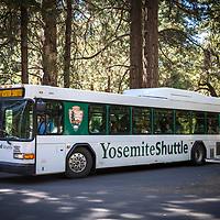 The Yosemite shuttle bus is seen inside Yosemite National Park on Sunday, September 22, 2019 in Yosemite, California. (Alex Menendez via AP)