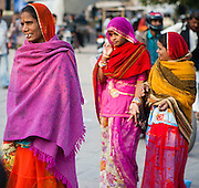 Indian women in saris (India)