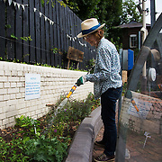Shelagh Molloy, a local resident to Brondesbury Park Stations puts in a few hours of work in the newly finished Energy Garden, watering and weeding. The water is collected rain water and the pump is solar panel powered. Energy Gardens is a pan-London community garden project where reclaimed land alongside over ground train stations and track are cultivated by local community groups. Up 50 gardens are projected with the rail network being the connection grid. The project is a collaboration between Repowering London, local community groups and station managers working for TFL.