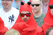 Fans in lobster fancy dress during the International Test Match 2019 match between England and Australia at Edgbaston, Birmingham, United Kingdom on 3 August 2019.