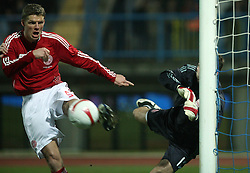 Chris Sorensen (5) and Thomas Sorensen (goalkeeper) of Denmark during the UEFA Friendly match between national teams of Slovenia and Denmark at the Stadium on February 6, 2008 in Nova Gorica, Slovenia.  Slovenia lost 2:1. (Photo by Vid Ponikvar / Sportal Images).