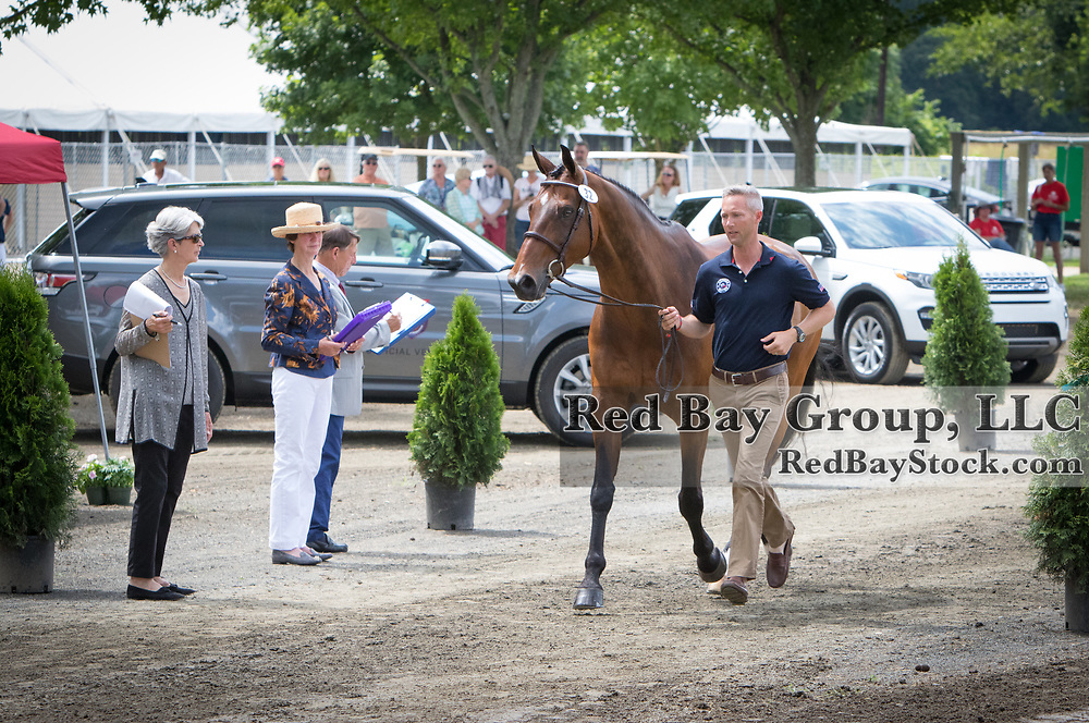 U.S. Eventing Team member, Clark Montgomery presents Loughan Glen to the ground jury during Horse Inspection at the 2016 Land Rover Great Meadow International on Friday, July 8, 2016, at the Great Meadow Foundation in The Plains, VA with a 2016 Range Rover Sport and a 2016 Discovery Sport in the background.