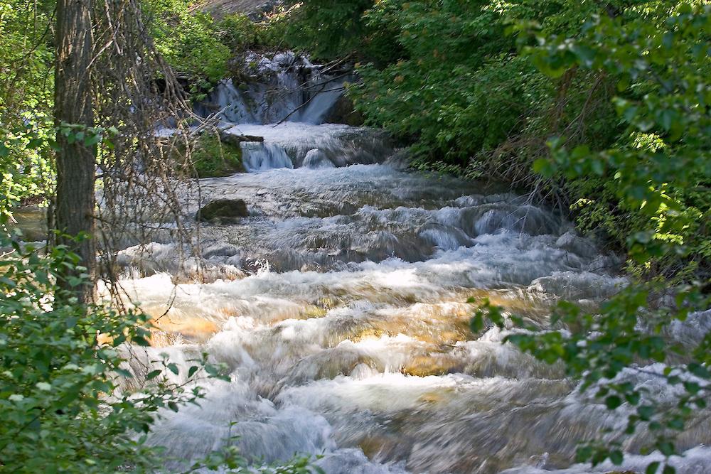 High Creek east of Richmond,Utah on July 4th, 2005. August Miller photo