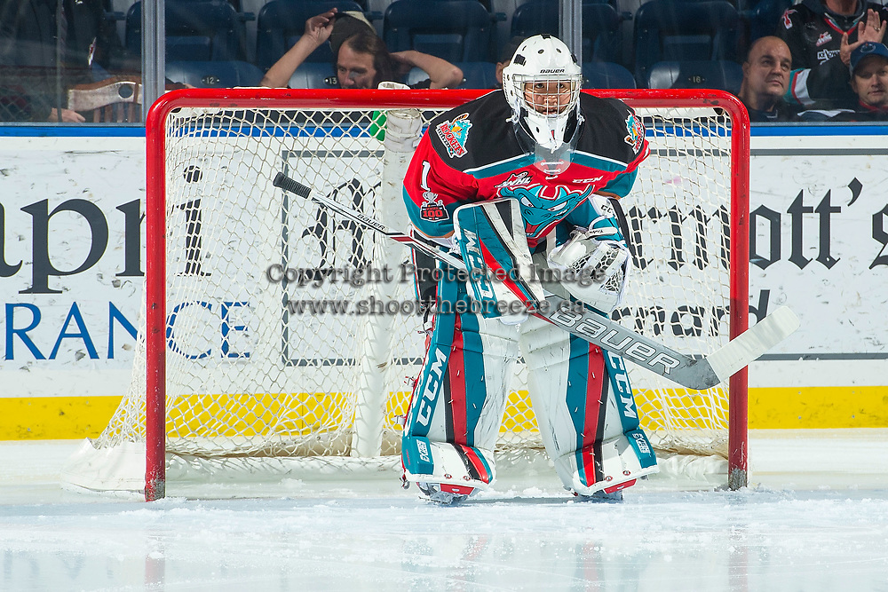 KELOWNA, CANADA - NOVEMBER 29: James Porter #1 of the Kelowna Rockets looks at the replay from the net against the Prince George Cougars on November 29, 2017 at Prospera Place in Kelowna, British Columbia, Canada.  (Photo by Marissa Baecker/Shoot the Breeze)  *** Local Caption ***